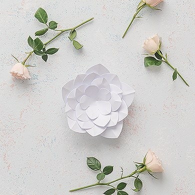 Small DIY Paper Apple Blossom Décor Flower