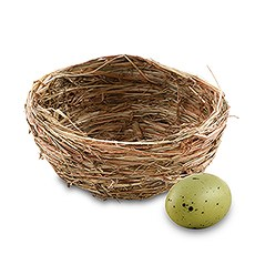 Mini Bird's Nest Wedding Favor