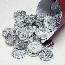 Foil Wrapped Silver Milk Chocolate Coins Favors Pack