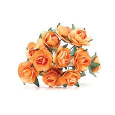 Orange Tea Roses - 24 Pack
